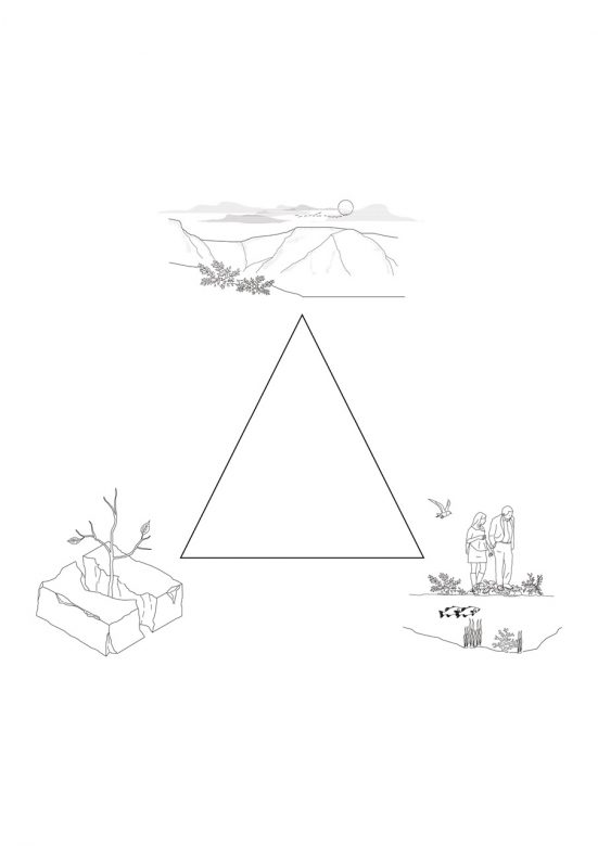 The triangle showing the three intentions that we have taken into account during the project; local ecology, point of interest and nature reclaim