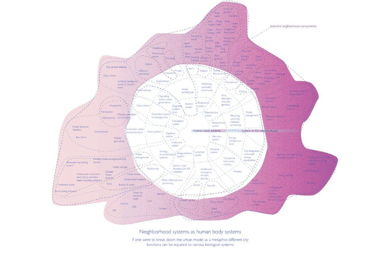 Neighbourhood systems as a human body systems diagram